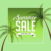 summer sale background with palm tree