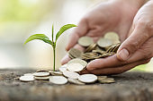 Plant growing in Coins glass jar for money saving and investment financial, concept for business, innovation, growth and money .