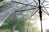 It's raining,  an umbrella. Sky have a drizzling and overcast all the time. Raining background, Umbrella background.