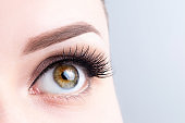 Eye with long eyelashes, beautiful makeup and light brown eyebrow close-up. Eyelash extensions, microblading, tattoo, permanent, cosmetology, ophthalmology concept