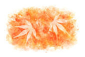 Japanese autumn red maple leaf abstract on natural watercolor paint background, vector illustration
