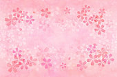 Japanese pink cherry blossom watercolor abstract or vintage paint background