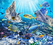 Fishes swims with floating bags. Problem of plastic pollution under the sea concept