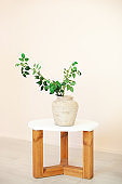 beautiful bouquet of green twigs with leaves stands in vase on wooden table in the living room. Home interior. Scandinavia. Rustic. Flower composition. Modern plant in a ceramic vase. Eco furniture