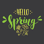 Hello Spring Calligraphy lettering handwritten sign, Hand drawn grunge calligraphic text. Vector illustration