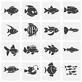 Fish related icons set on background for graphic and web design. Simple illustration. Internet concept symbol for website button or mobile app.