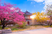 Changdeokgung Palace in Spring South Korea