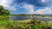 Dnieper river in summer day panoramic landscape