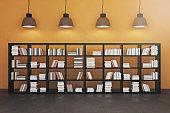 Contemporary interior with bookshelf