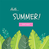 Sale banner, Hello summer leaves vector poster template background.