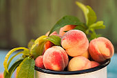 Homemade peaches with leaves in an enamelled white mug close-up and copy space. Beautiful juicy ripe peaches.