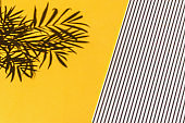 Summer holidays bright yellow background with stripes and palm shadow