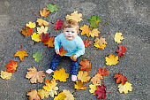 Adorable little baby girl in autumn park on sunny warm october day with oak and maple leaf. Fall foliage. Family outdoor fun in fall. child smiling. Baby celebrating ten months.