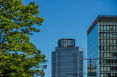 Streets of Sendai,Miyagi Prefecture