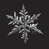 Glossy snowflake on black background