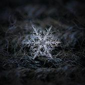 Snowflake glowing on dark textured background