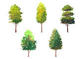 set of hand drawn green tree watercolor illustration, isolated nature on white background