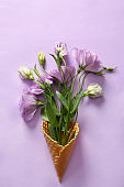 Waffle cone with beautiful eustoma flowers on color background
