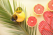 Summer composition with tropical fruits and beach accessories on light background