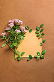 Beautiful rose flowers with blank card on color background