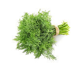 Bunch of fresh dill on white background