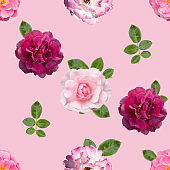 Seamless pattern with different flowers of roses on  pink background.