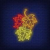 Autumn maple leaves neon sign