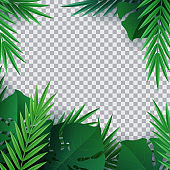 Hello summer, summertime. Background of tropical plants. Palm leaves, jungle leaf. The poster for sale and an advertizing sign.  Vector