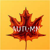 Paper art cartoon abstract waves. Autumn paper carve background. The maple leaf which is cut out from paper. Modern origami design template. Vector illustration.