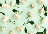 Flowers composition background. beautiful pale pink roses pattern on pale blue mint  background.Top view.Copy space