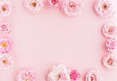 Flowers composition background. beautiful pale pink roses on pale pink background.Top view.Copy space