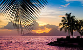 Sunset on the beach with silhouette of palms. Colorful summer vacation evening landscape.