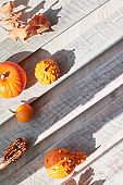 Flat lay, top view of orange pumpkin and dry Autumn leaves with copy-space