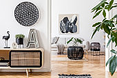 Modern scandinavian interior design of open space with stylish wooden commode, gray sofa, rattan coffee table, plant, tropical leaf and elegant personal accessories. Stylish home decor. Template