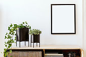 Modern scandinavian home interior with mock up photo frame, design wooden commode, plants in black pots, gray sofa, books and personal accessories. Stylish home decor. Template. Ready to use.