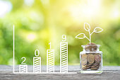 Plant growing in savings coins and 2019 word growing graph on wooden nature background.