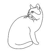 Continuous line drawing. Cat. Vector illustration. In black colour isolated on white background.