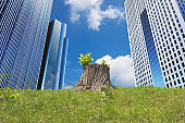Expanding urban buildings and deforestation. New leaves regenerated from the cut stumps. Image of environmental problems such as deforestation, CO2, and global warming.