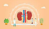 human kidney health with doctor team discuss and healthy icon spread with modern flat style - vector