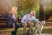 Happy Senior couple outdoors with dog enjoying