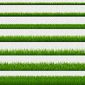 Green Grass Border And Transparent Background