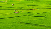 Small house and rice terraces field with Mountain and blue sky background at Nan Thailand