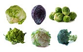 Various cabbages isolated on white background. Brussels sprouts, broccoli, cabbage Romanesco, cauliflower, white cabbage on white. Vegetables isolated on a white background. Vegetables with copy space for text.