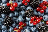 Mix berries and fruits. Ripe blackberries, blueberries, blackcurrants, red currants. Top view. Background berries and fruits. Various fresh summer fruits. Background of mix berries and fruits. Fresh berries close-up.