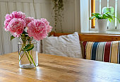 big pink peony blossoms indoors in a kitchen