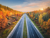 Aerial view of asphalt road in beautiful autumn forest at sunset. Colorful landscape with empty highway, trees with red and orange leaves, blue sky with sun in fall. Top view of roadway. Autumn colors