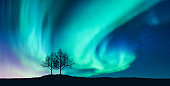 Aurora borealis and silhouette of the trees on the hill. Aurora. Northern lights. Sky with stars and green polar lights. Night landscape with bright aurora, tree, starry sky. Space background. Concept