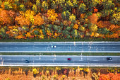 Aerial view of road in beautiful autumn forest at sunset. Colorful landscape with highway, cars, trees with red, yellow and orange leaves. Top view of roadway. Autumn colors. Fall woods. Scenery