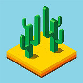 Cactus set in desert as isometric icons with flat colors