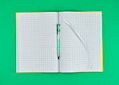 open notebook in line and gel pen on a green background